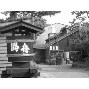 画像2: 越乃かたふね特別本醸造