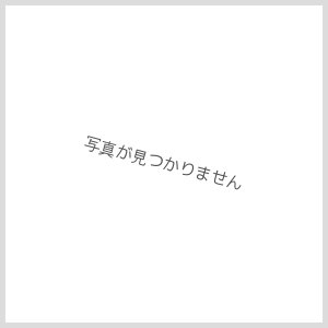 画像2: 越乃かたふね 純米原酒壱回火入れ